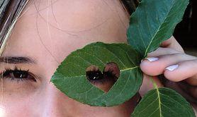 Suplementy diety na oczy