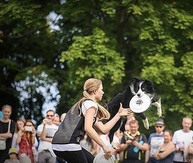 Latające Psy na Polu Mokotowskim. Będziecie zaskoczeni
