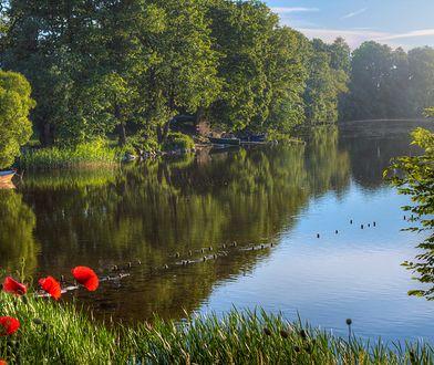 Ciekawe szlaki, zielone lasy, bajkowe jeziora i urokliwe wioski - w Polsce znajdziemy mnóstwo miejsc, w których można odpocząć
