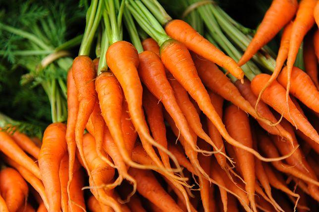 Marchewkę można jadać na surowo, jako surówkę, gotowaną w sałatkach i zupach lub z wody, smażoną, duszoną. Przepisy z marchewką
