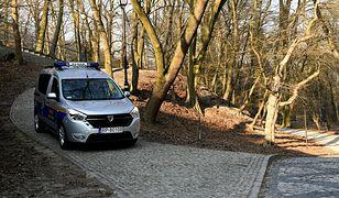 Koronawirus w Polsce. Lasy Państwowe wprowadzają tymczasowy zakaz wstępu do lasów (zdj. ilustracyjne)