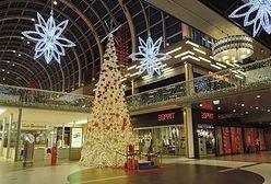 Polacy wolą nie zapłacić za czynsz niż oszczędzać na świętach