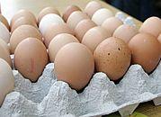 Ekolodzy apelują przed świętami: kupuj jajka z głową!