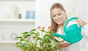 To nie przelewki! Zasady podlewania roślin