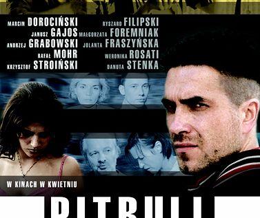 """Serial """"Pitbull"""" emitowany był w latach 2005-2008"""