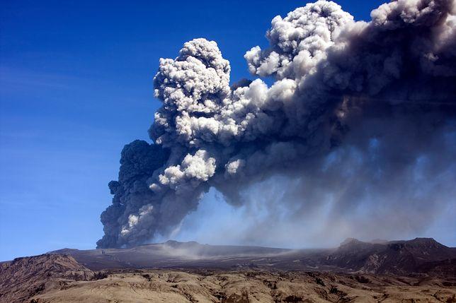 Dlaczego Masyw Tamu to jednak nie największy wulkan na Ziemi?
