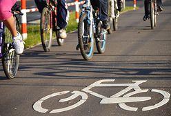 Rowerzyści we Wrocławiu nie potrafią korzystać z nowych ścieżek. Jeżdżą pod prąd