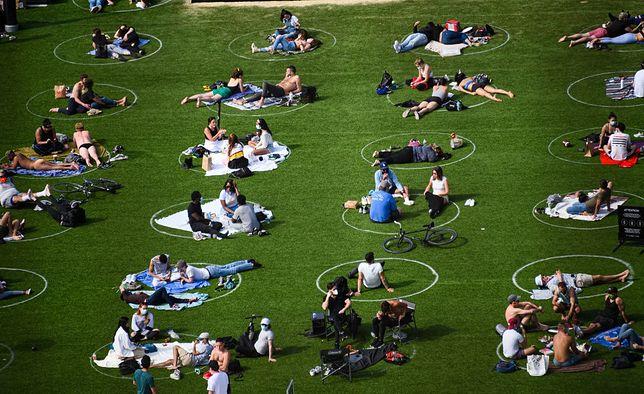 Zarządcy Parku Domino postanowili namalować na trawie białe kręgi, które dzieli dystans 1,5 m