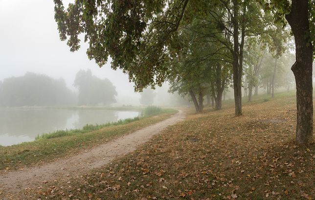 Ranek będzie mglisty, a dzień pochmurny
