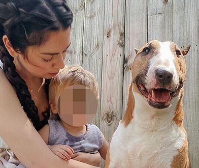 Uśpiła psa, bo ugryzł jej dziecko. Tłumaczenia celebrytki w niczym nie pomogły