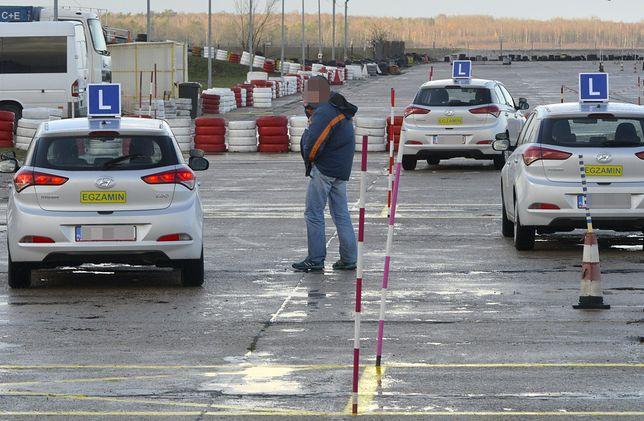 Niemcy znaleźli sposób na łatwe odzyskanie odebranego prawa jazdy. Robią je w Polsce