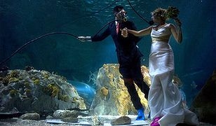 Niezwykły ślub pod wodą