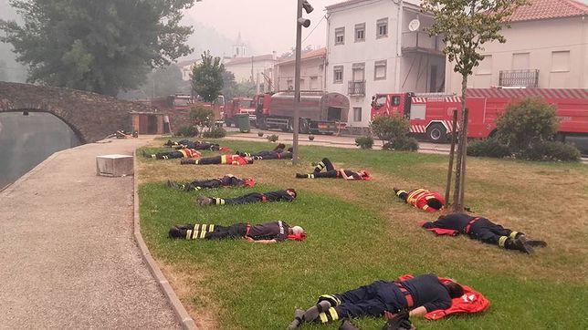 To zdjęcie wstrząsnęło internautami. Pokazuje dramatyczną walkę strażaków