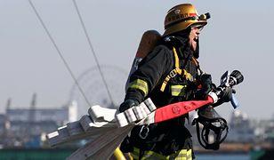 Trzęsienie ziemi w Japonii. Świadkowie mówią o trzęsących się budynkach