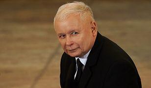 Jarosław Kaczyński jest znany z miłości do kotów