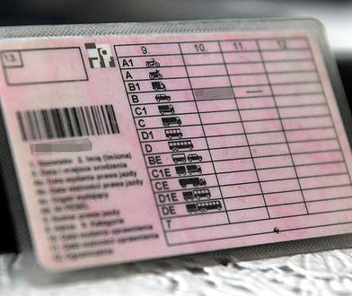 Mazowieckie. Obcokrajowiec miał podrobione prawo jazdy. Kupił je za 300 euro