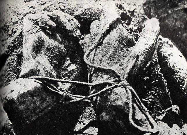 Wasilij Błochin, stalinowski kat Polaków