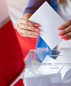 Wybory parlamentarne 2019. Jak sprawdzić poglądy partii politycznych?