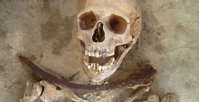 Pochówek wampiryczny datowany na XVII-XVIII w. odnaleziony w okolicy Drawska (woj. zachodniopomorskie). Uwagę zwraca sierp ułożony na szyi, który miał uniemożliwić zmarłemu wstanie z grobu
