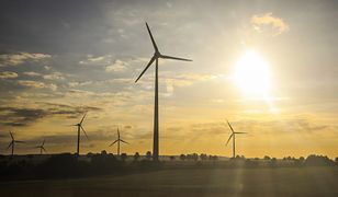 Energia elektryczna z OZE: innogy Renewables dostarczy ją do 3 browarów Kompanii Piwowarskiej