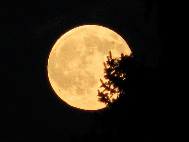 Zaćmienie i pełnia Księżyca już w tym tygodniu. To pierwsza z nielicznych takich okazji w tym roku