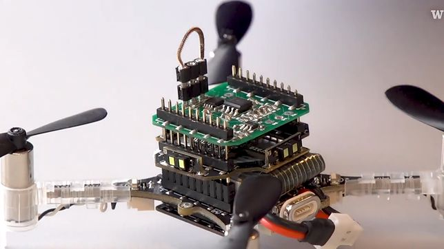 Dron, który wykorzystuje żywe czułki
