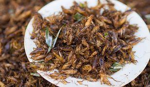 70 suszonych owadów w bochenku chleba. Jedna z największych sieci w Finlandii rozpoczęła sprzedaż