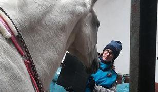 Bielsko-Biała. Pomagają koniom. Potrzebują wsparcia na dentystę