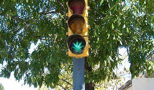 Zatrzymany kierowca posiadał niedopałek skręta z marihuany.