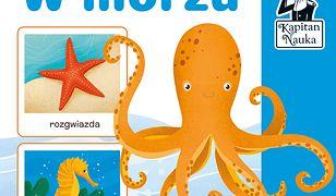 Kapitan Nauka. W morzu (karty obrazkowe + poradnik). W morzu (karty obrazkowe + poradnik)