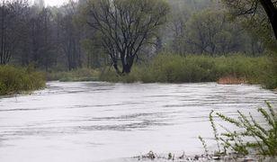 Przybywa wody w rzekach Podbeskidzia; alarmy na Wiśle i Iłownicy