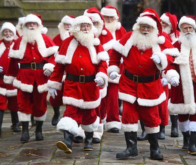 Najlepiej można zarobić udając św. Mikołaja, opłaca się też opieka nad zwierzętami