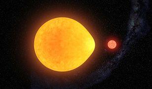 Nowoodkryta gwiazda pulsuje tylko z jednej strony