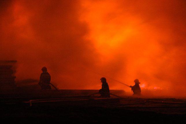 Wielkopolska. Próbował gasić pożar trawy łopatą. Trafił na intensywną terapię (Flickr.com, Arek)