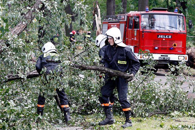 Wiatr może zrywać linie energetyczne i powalać drzewa