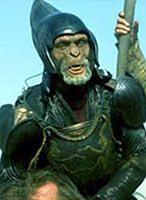"""""""Planeta Małp"""" wciąż przyciąga filmowców"""