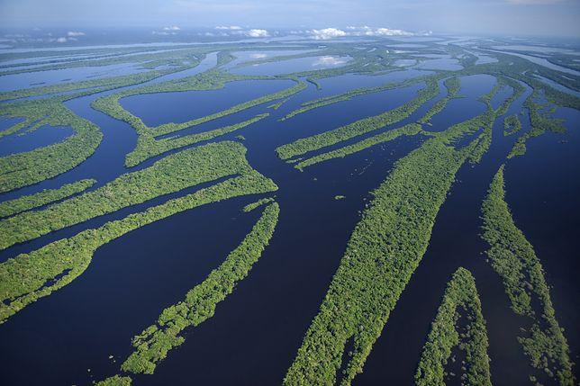 Rio Negro to największy lewy dopływ Amazonki w Brazylii