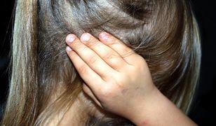 Walka o 4-latkę. O losie dziecka zadecyduje sąd w Katowicach