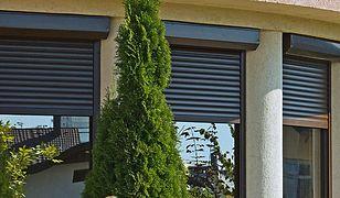 Osłony okienne: rolety, okiennice, markizy. Które wybrać?