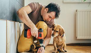 Niezbędnik domowego majsterkowicza ułatwi wykonywanie drobnych napraw w domu bez wzywania fachowca