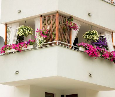 Taras, balkon czy ogródek - które rozwiązanie wybrać planując zakup mieszkania w bloku