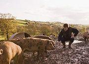 Odwrót od małych gospodarstw rolnych