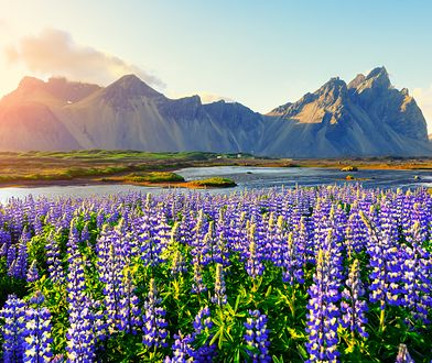 W Islandii nie tylko pogoda zmienia się bardzo często, ale też krajobraz