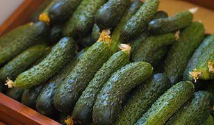 5 powodów, dla których warto jeść ogórki