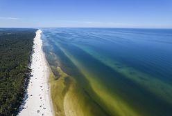 Rekordowo ciepłe Morze Bałtyckie w lipcu. Co jest przyczyną? Ekspert tłumaczy