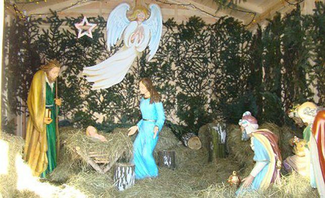 Zwierzaki z zoo pojawią się w Szopce Bożonarodzeniowej!