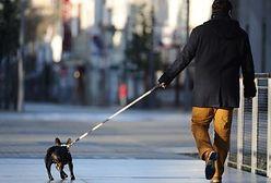 Mandaty za psa bez kagańca są nielegalne