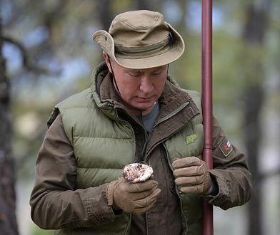 Władimir Putin wybrał się na grzybobranie