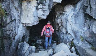 Norwegia. Turyści znaleźli w lesie torbę z gigantyczną sumą pieniędzy