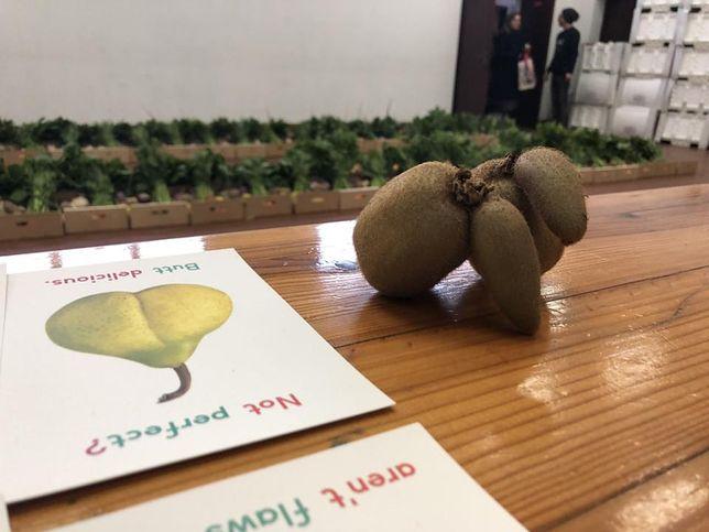 """Firmy handlujące """"brzydkimi owocami"""" powstają jak grzyby po deszczu. """"Udało się uratować 1,5 tys. ton"""""""